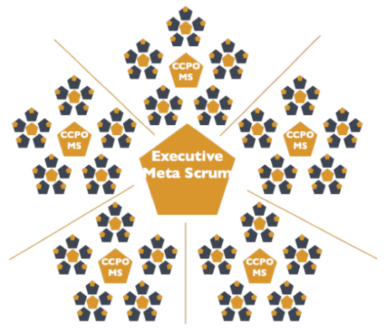 Executive MetaScrum